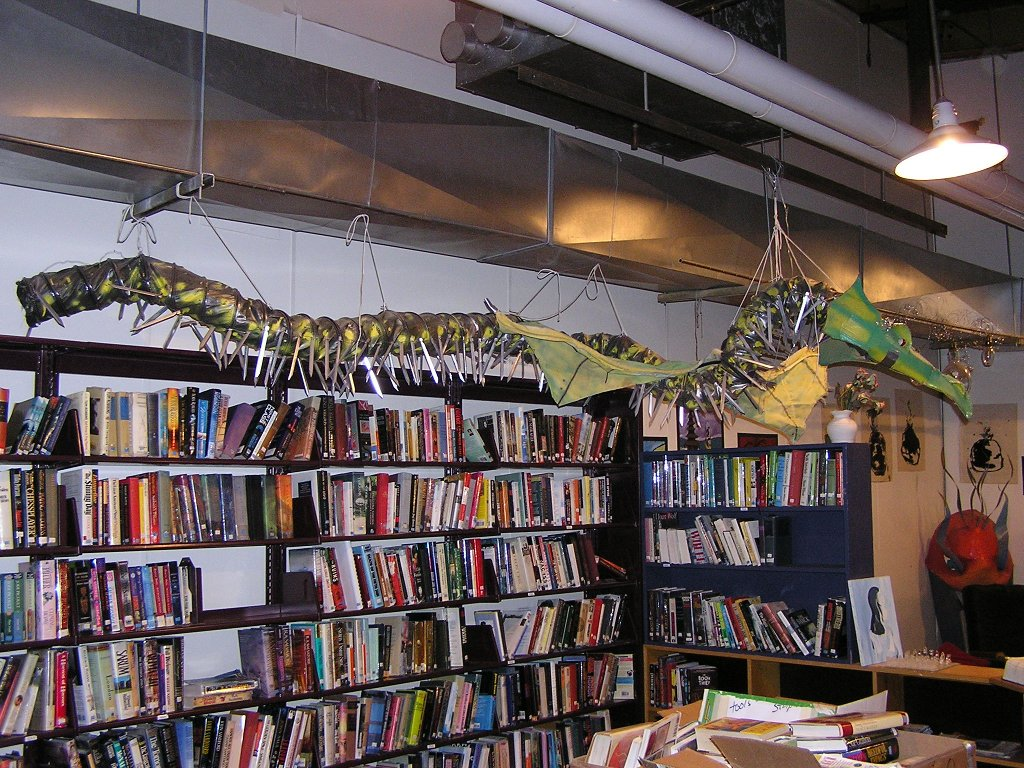 A dragon guards the fiction.